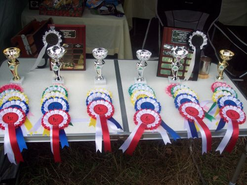 Trophies and rosettes